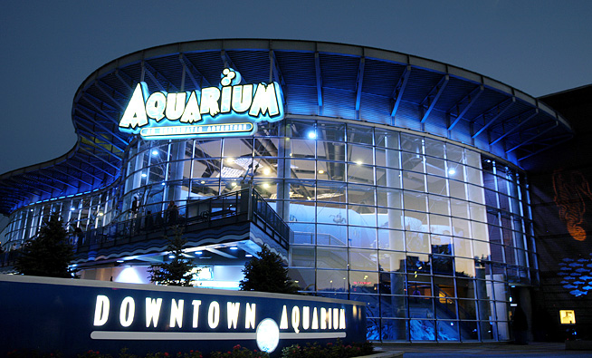 Downtown Aquarium Denver